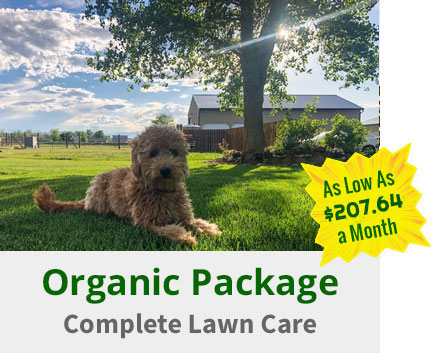 organic-package